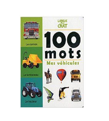 MES VEHICULES - 100 MOTS